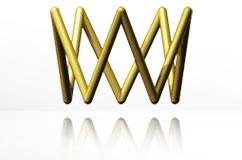 2008_logo_wsa